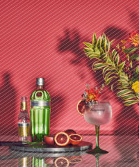 Drink DuJour: Orange Harvest Tanqueray & Tonic