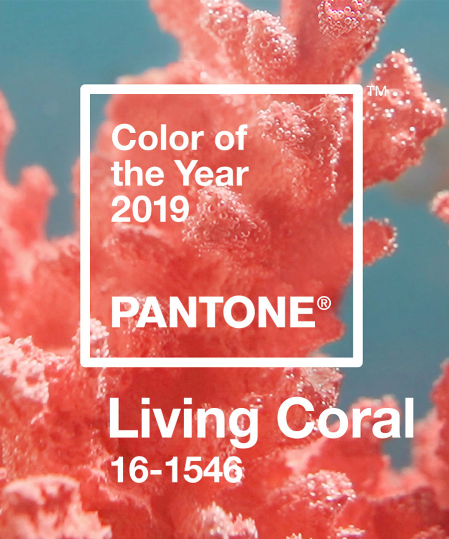 The Most Stylish Accessories in Living Coral