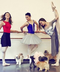 Meet the American Ballet Theater Dancers and Their Dogs