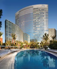Cool Down in Las Vegas at These Stylish Pools