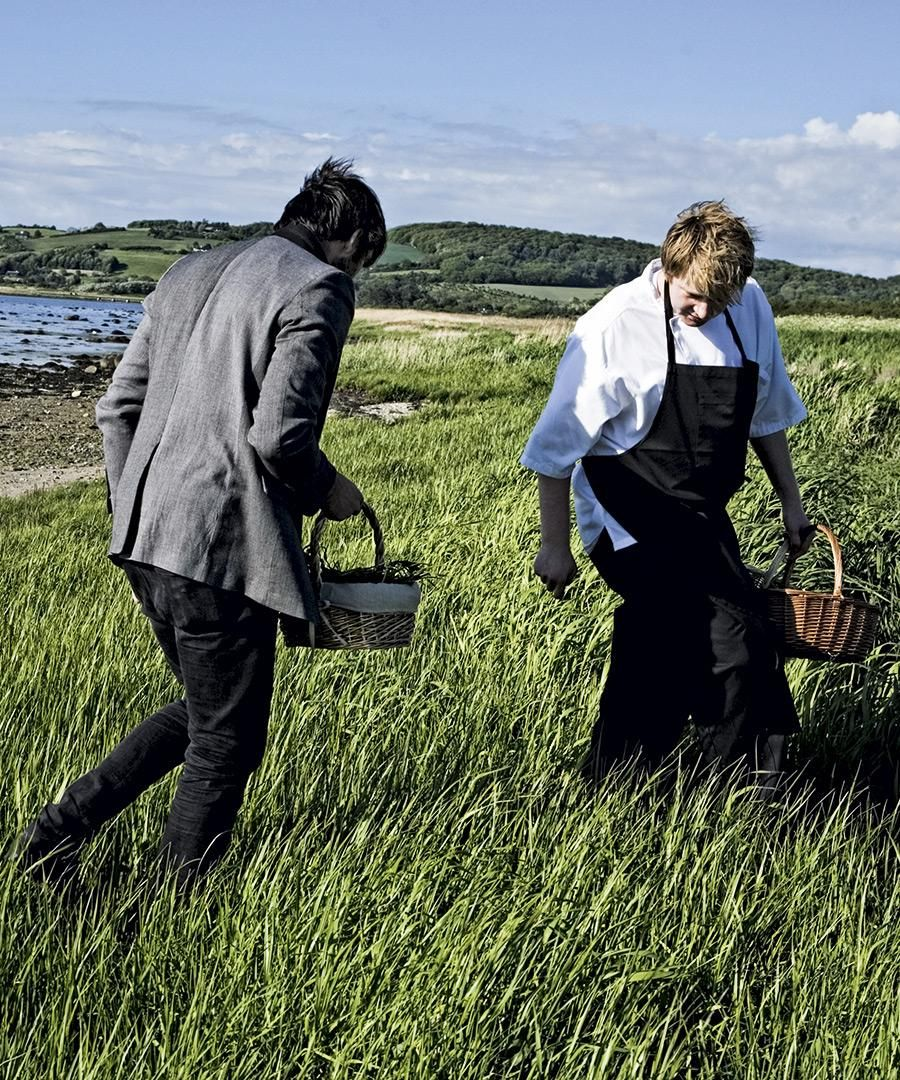 Ready, Set, Forage: How the World's Best Chefs Cook Raw
