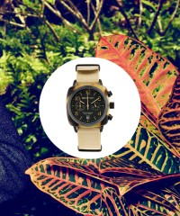 A Perfect Watch for Every Travel Destination