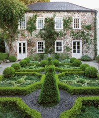 11 Summer Garden Ideas on Pinterest