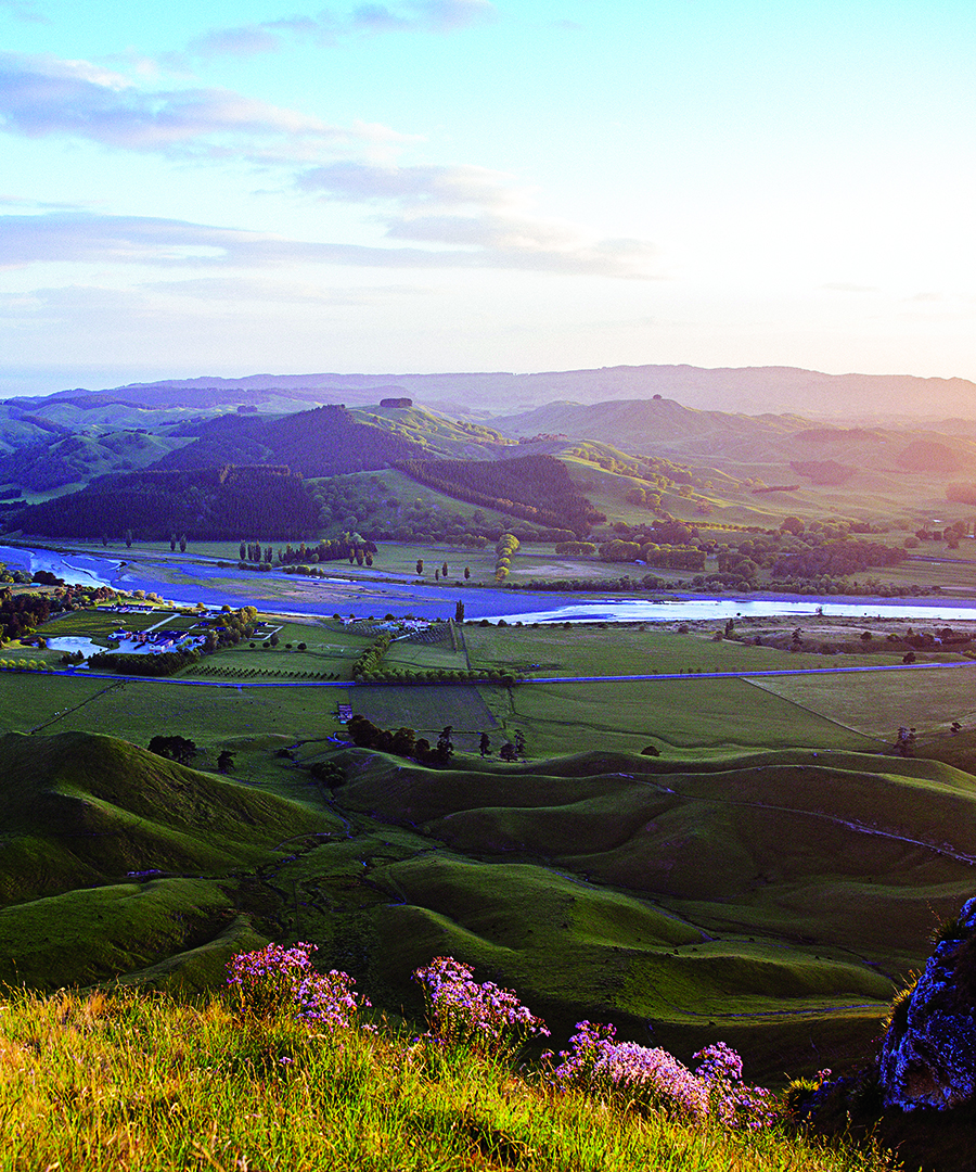 Living Luxe in New Zealand