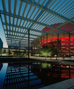 The Best Attractions and Activities in Dallas