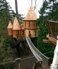The World's Most Luxurious Tree Houses
